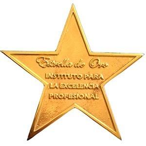 Estrella de Oro concedida a iMeelZ por el Instituto de Excelencia Profesional
